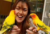 Two parrots who were rescued from a life of breeding