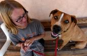 Guy the exuberant dog who is receving training sitting on a bench with a caregiver