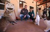 Edina and Nathan Ivens playing at Calmar, a cat building at Best Friends Animal Sanctuary, during their volunteer trip