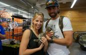 BOBS from Skechers for the Cats and Kicks cat adoption event, hosted at DSW on Broadway in New York