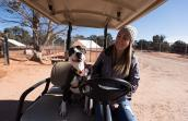 Jessie the dog on a golf cart ride