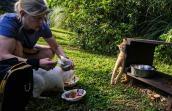 Volunteer feeding the community cats at Lafreniere Park