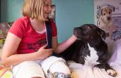 Lydia, a young girl who had her leg amputated, posing with Clover, the three-legged pit bull terrier