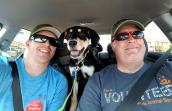 Veterans with Team RWB give back to the animals by volunteering at Best Friends Animal Sanctuary