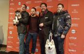 Arctic Breeds Rescue dogs at the Sundance Film Festival
