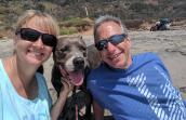 A smiling man and woman on a hike with a gray colored pit-bull-terrier-type dog