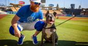 Tyson the dog with L.A. Dodgers baseball player Justin Turner