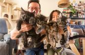 David Soobin Lee and Yomi holding a litter of four foster kittens