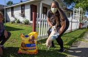 Woman in a mask and gloves delivering a large bag of dog food while leaning down to hold a white Chihuahua type dog