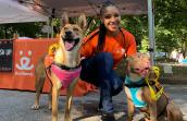 Volunteer Nisha Gross in front of a Best Friends booth kneeling next to two dogs