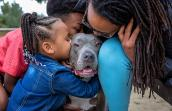 Woman and two children kissing Lol the gray and white pit bull terrier they adopted