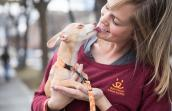 Woman wearing a Best Friends shirt holding a small tan dog who is kissing her face