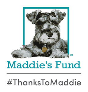 #ThanksToMaddie Maddie's Fund logo