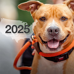 https://bestfriends.org/Smiling%20brown%20dog%20with%20an%20outline%20of%20the%20United%20States%20with%202025%20over%20it