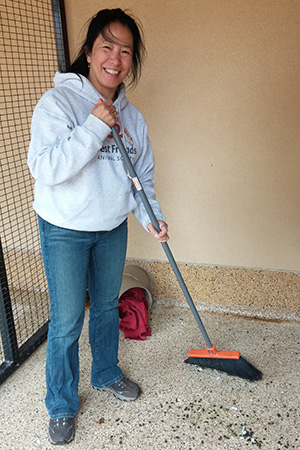 Volunteer Sophia Lim sweeping a rabbit enclosure at Best Friends Animal Sanctuary