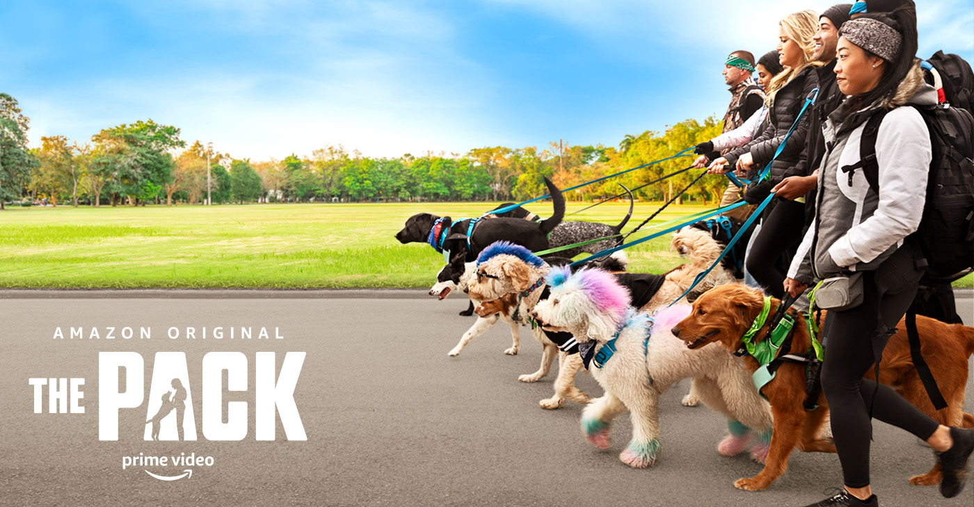 Group of people walking dogs all in a row, with the words, Amazon Original The Pack Prime Video