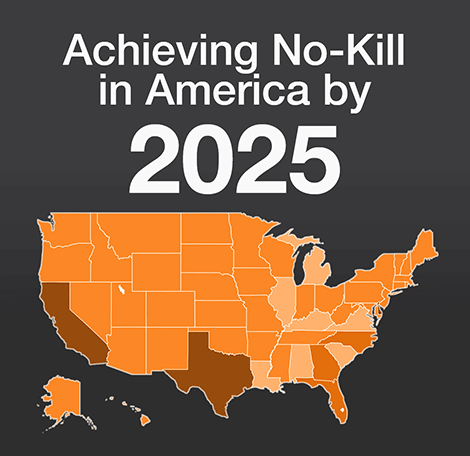 Achieving no-kill in America by 2025 with map of the United States