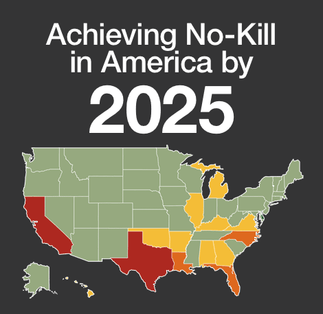 Achieving No-Kill in America by 2025 with map of United States