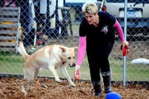 Brenda helping at 4 Love of Dog Rescue in North Dakota