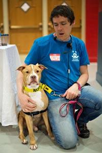 Zach Walker volunteering at the Pet Super Adoption