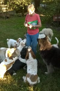 Woman handing out Blue Buffalo treats surrounded by a group of dogs