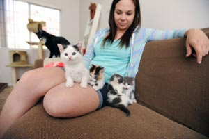 Carrie and the Texas litter of kittens
