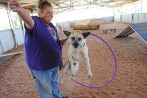 Raquel jumping through hoops