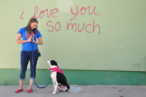 Best Friends funded a Canine Good Citizenship Ready program for Austin Pets Alive
