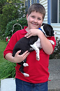 Pitbull dog who was helped through the Fix-a-Bull program being held by a boy