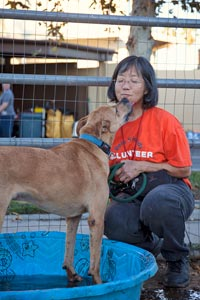 Volunteer Luci giving and receiving affection from a timid dog from a hoarding case