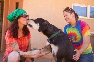 Elwood the hound mix giving his trainer a kiss