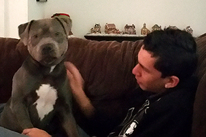 Roxy the pit bull and Joey who has Asperger's syndrome, a form of autism