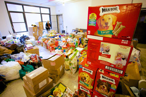 Donations for the animal victims of Superstorm Sandy