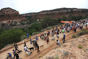 Strut Your Mutt strutters in Kanab
