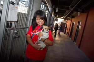 Volunteer dog trainer at L.A. animal shelter holding a dog