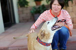 Jennifer Hubbard with a dog
