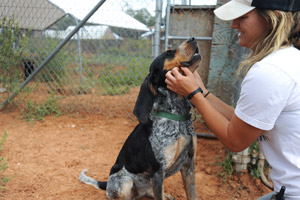 Lucy Lu the hound with her caregiver at Best Friends