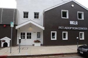 NKLA Pet Adoption Center in West Los Angeles