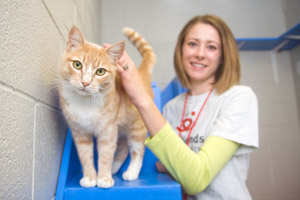 Julie Brueck with Oso the tabby cat