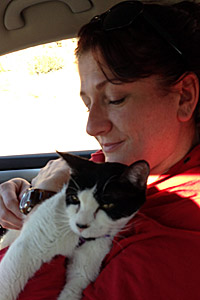 Vicki Dixon and Mia the cat on their way to Best Friends Animal Sanctuary
