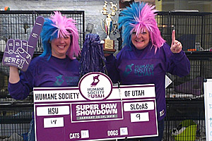 Winners of the Super Paw Showdown, an animal adoption event in Utah