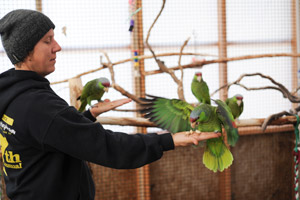 Ina-Yoko Teutenberg makes friends with the Amazon parrot at Best Friends Animal Sanctuary