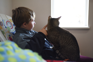 Jacob and Mister the cat watching birds