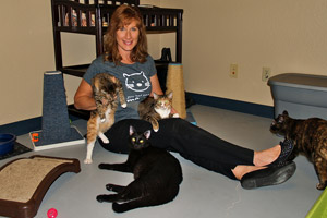 Kim Kamins, founder of Fearless Kitty Rescue, with some of the cats