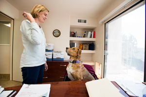 Digby the dog with lupus enjoys his job at the Best Friends human resources office