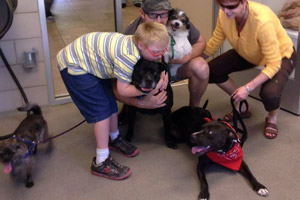 Speck the black dog with his new family
