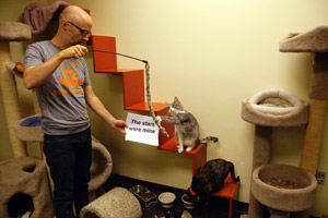 Moby plays with a cat at Best Friends Pet Adoption and Spay/Neuter Center in Los Angeles