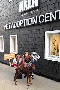 The 1,000th adoption at the NKLA Pet Adoption Center