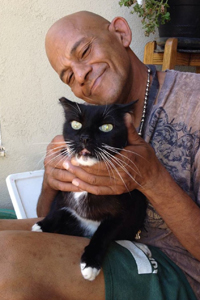 Mike and Honey Bunny the L.A. tuxedo cat who was spayed