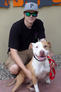 Marcee the pit bull terrier who wants to be an only dog and Daniel Carr
